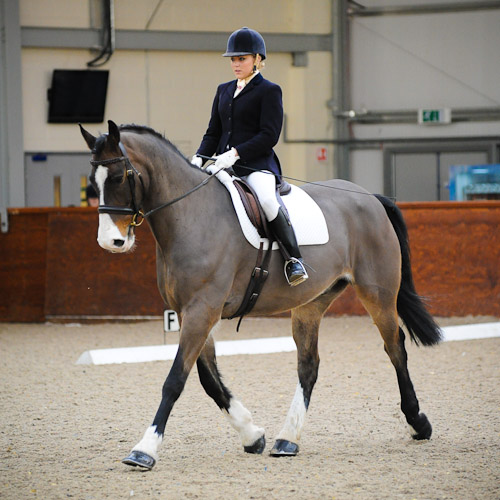 Pony Club Dressage